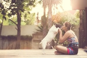 dogs remember their siblings | Ultimate Pet Nutrition