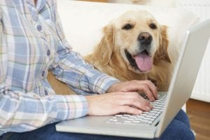 Insurance for Dogs | Ultimate Pet Nutrition
