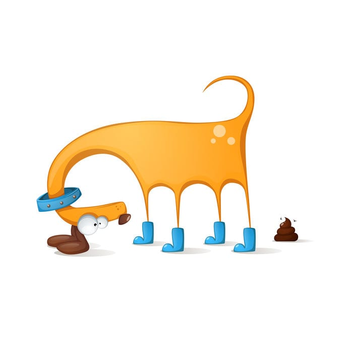 Dog Poop | Ultimate Pet Nutrition