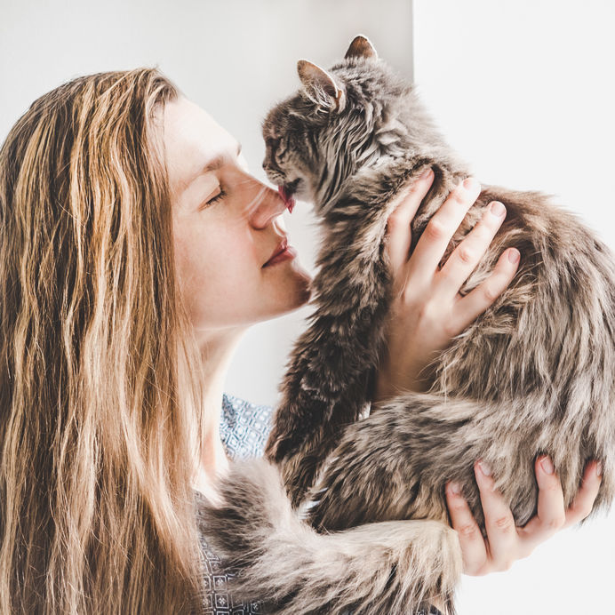 why does my cat lick me | Ultimate Pet Nutrition
