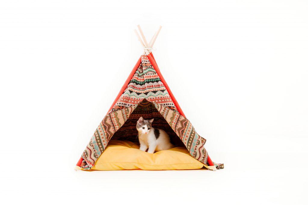 cat teepee | Ultimate Pet Nutrition