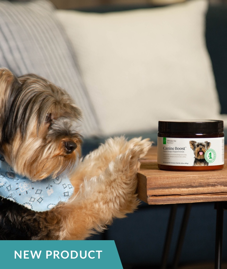 Ultimate Pet Nutrition - Canine Boost