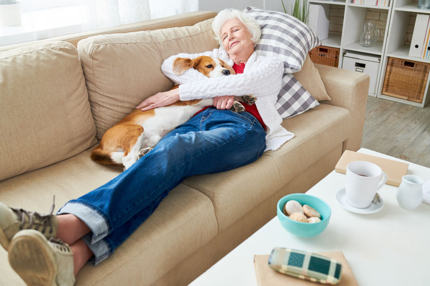 getting an emotional support dog | Ultimate Pet Nutrition