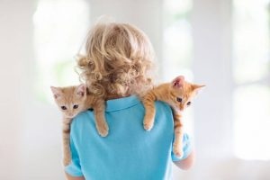 child back to camera, holding kittens
