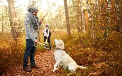 Fun Outdoor Activities To Do With Your Dog This Fall