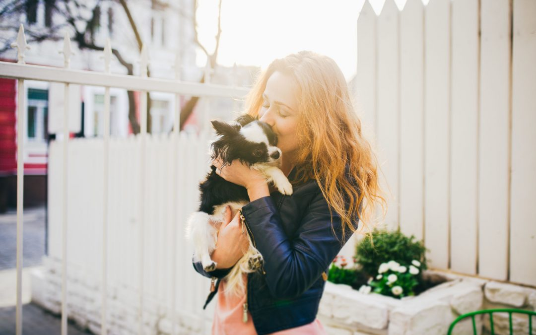 What You Should Know Before Getting An Emotional Support Dog