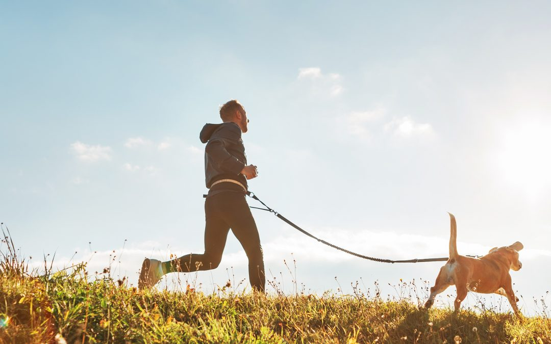 Tips And Tricks To Make Running With Your Dog Easier