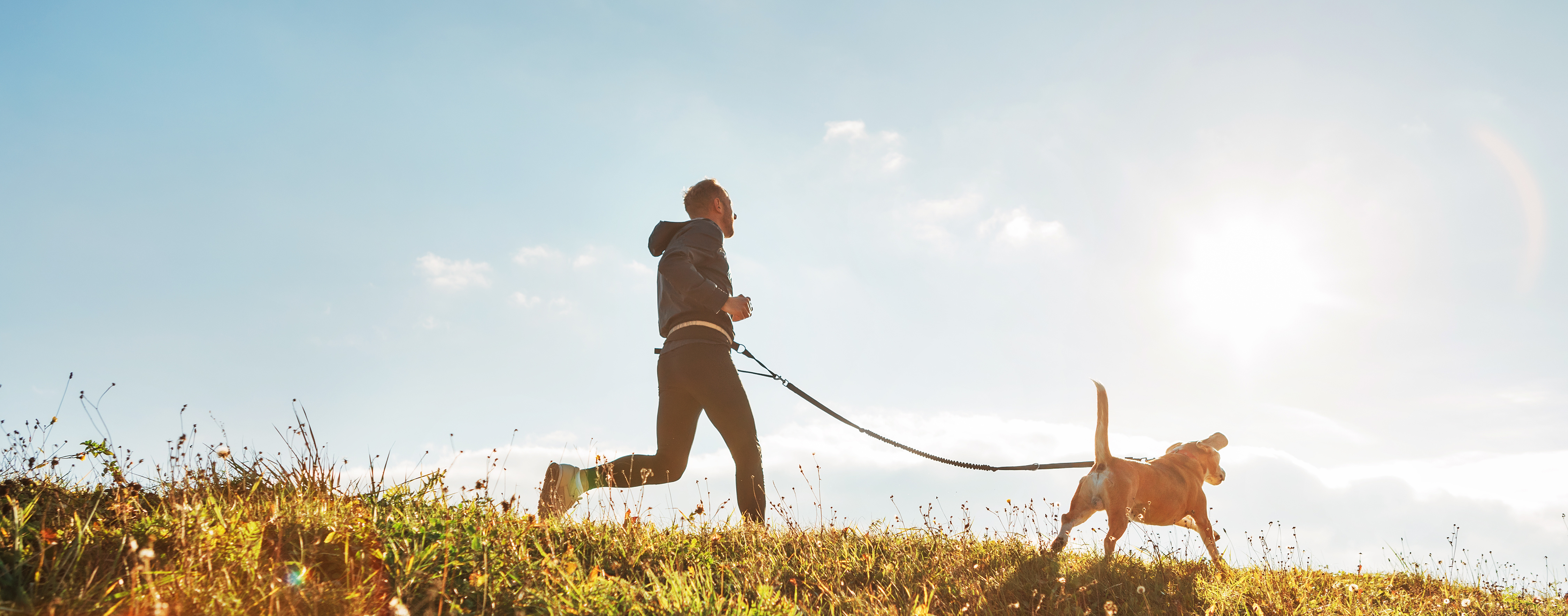 running with your dog   Ultimate Pet Nutrition