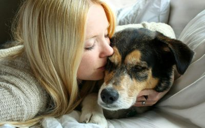 Woman with elderly dog | Ultimate Pet Nutrition