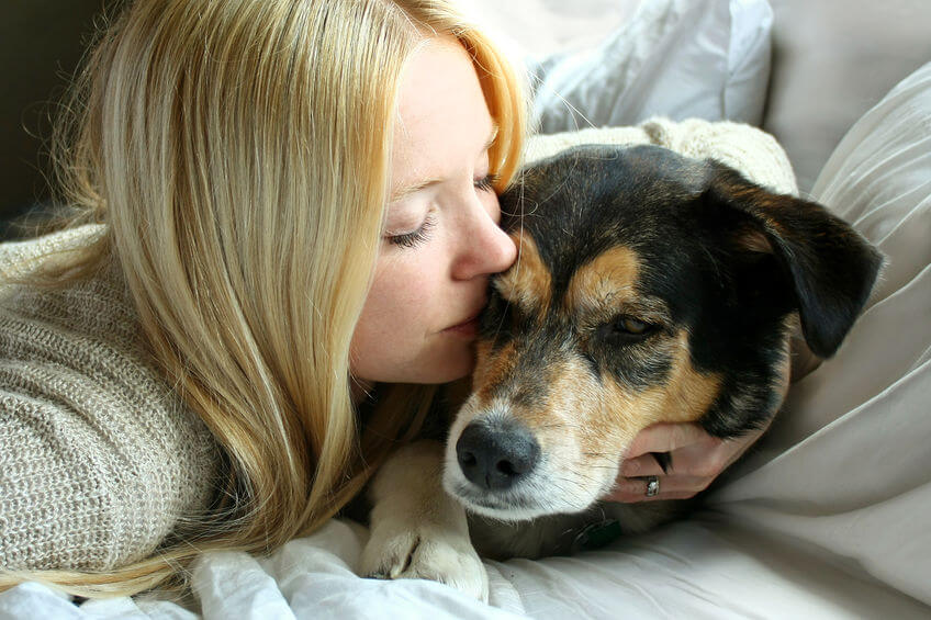 Elder Pet Care: Tips For Caring For Your Elderly Dog