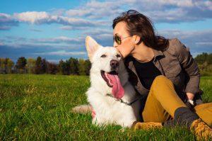positive reinforcement affection