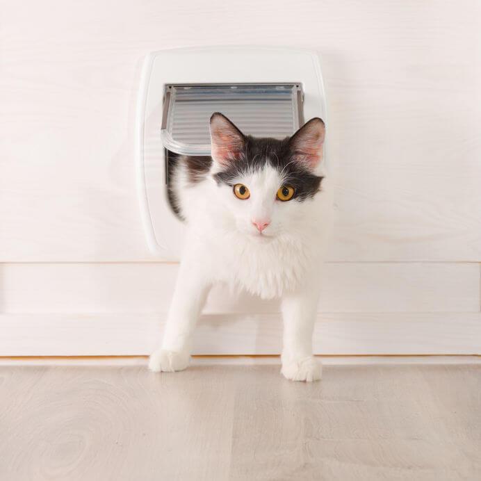 cat door | Ultimate Pet Nutrition