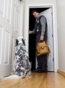saying bye to dog | Ultimate Pet Nutrition