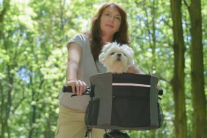 bike basket for dog | Ultimate Pet Nutrition