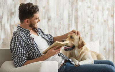 Perfect Dog Books For Canine Lovers And Pet Parents Alike