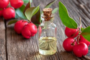 wintergreen essential oil | Ultimate Pet Nutrition