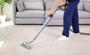 steam cleaning rug   Ultimate Pet Nutrition
