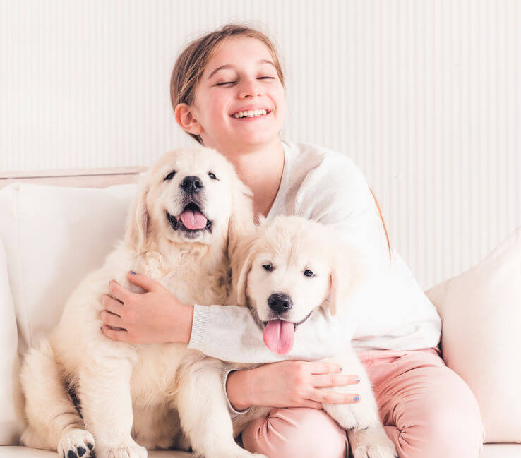 puppies on couch with girl | Ultimate Pet Nutrition