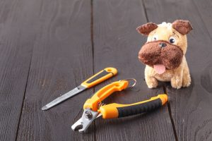 dog nail trim tools | Ultimate Pet Nutrition