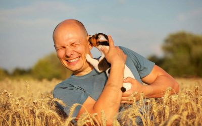 Info For Pet Parents: Why Does My Dog Lick My Ears?