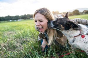 dog licking womans face | Ultimate Pet Nutrition