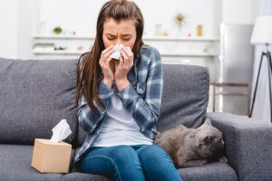 cat allergies | Ultimate Pet Nutrition