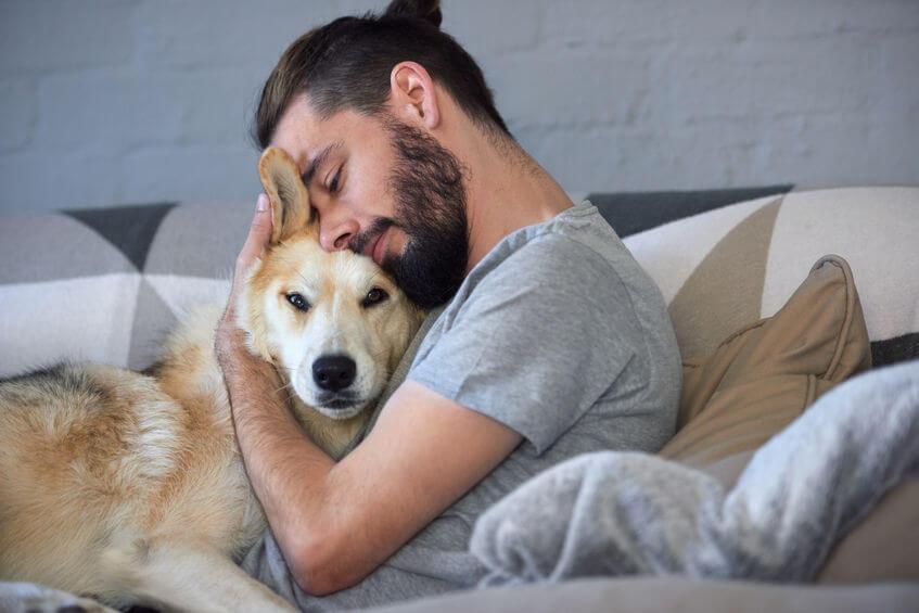 hugging dog | Ultimate Pet Nutrition