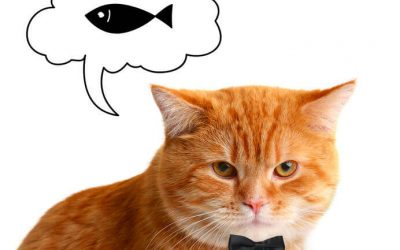 Can Cats Eat Sardines? Essential Info For Cat Parents