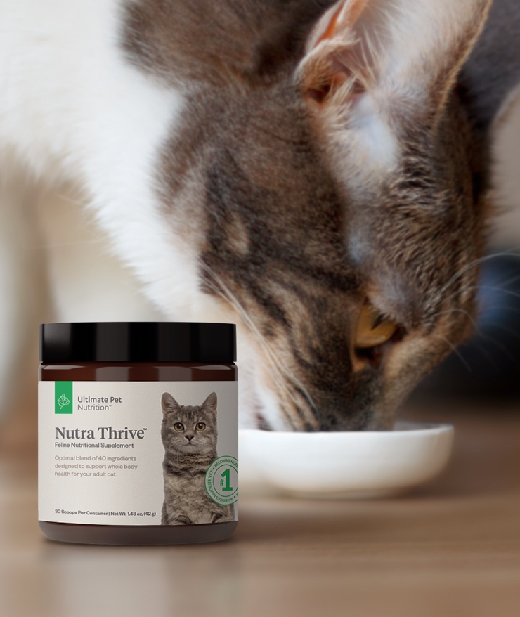 Ultimate Pet Nutrition - Nutra Thrive for Cats