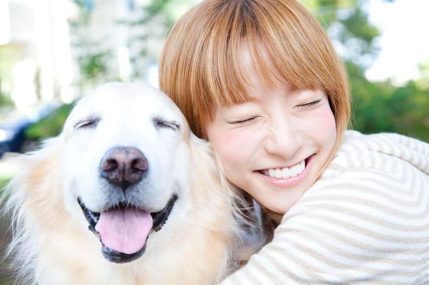 positive reinforcement | Ultimate Pet Nutrition