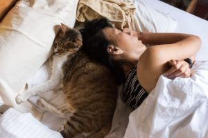 sleeping in bed with cat | Ultimate Pet Nutrition