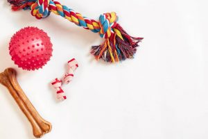 dog toys | Ultimate Pet Nutrition