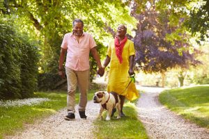retirement stage | Ultimate Pet Nutrition
