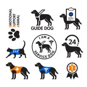 service dog vest emblems | Ultimate Pet Nutrition