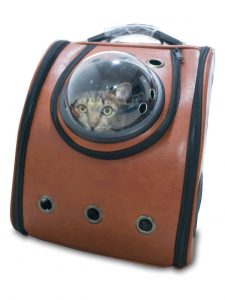 cat in travel carrier | Ultimate Pet Nutrition