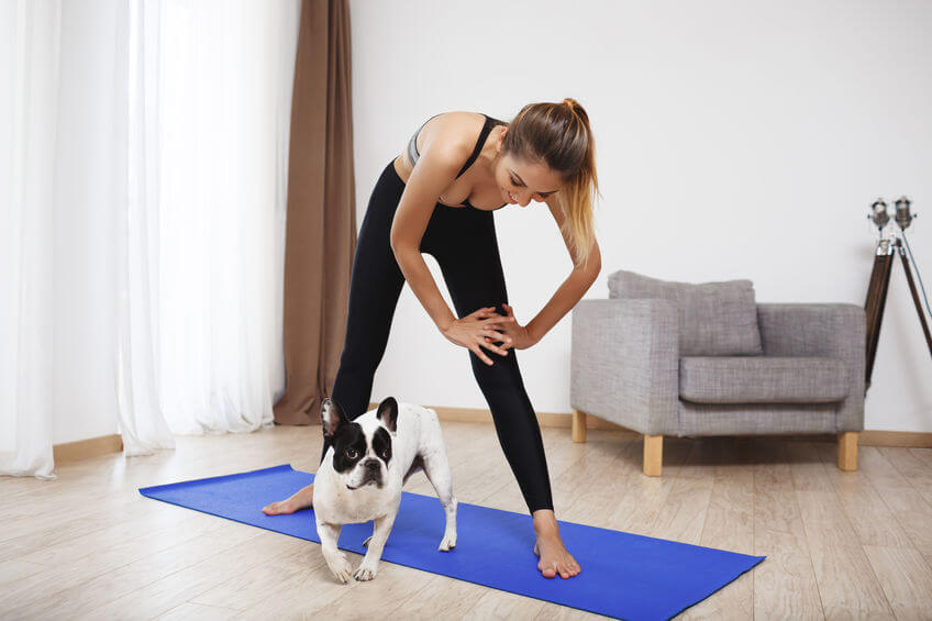 dog yoga | Ultimate Pet Nutrition