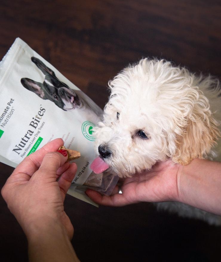 Ultimate Pet Nutrition - Nutra Bites
