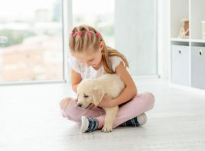 puppy training | Ultimate Pet Nutrition