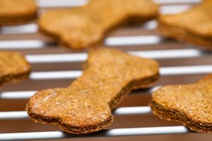 pumpkin dog treats   Ultimate Pet Nutrition