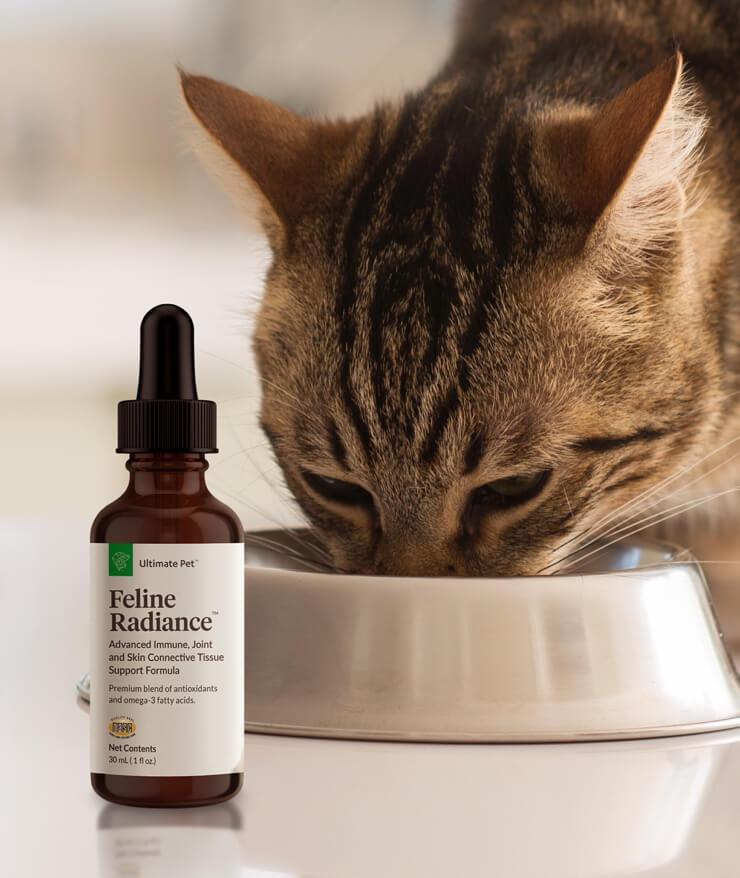 Ultimate Pet Nutrition - Feline Radiance