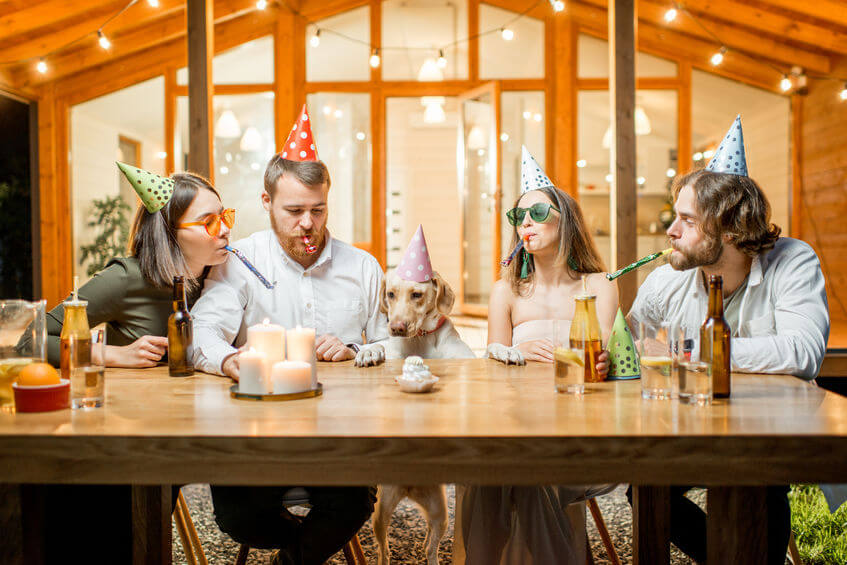 dog party | Ultimate Pet Nutrition
